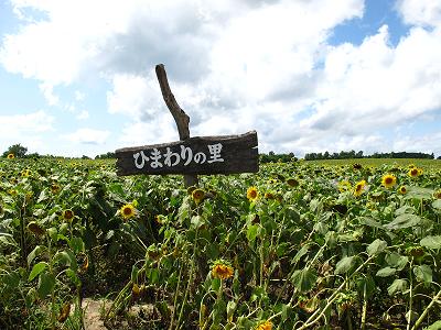 富良野・美瑛・トマム 065